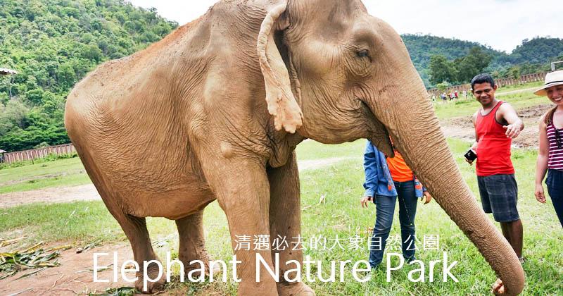 清邁大象自然公園|Elephant Nature Park門票、Tour,清邁一定要去的地方