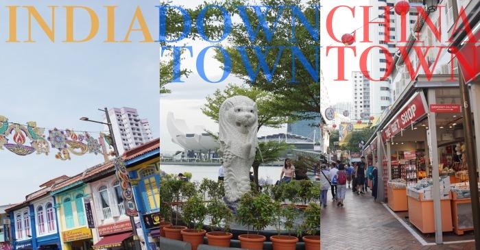 新加坡景點|小印度、魚尾獅公園、牛車水交通歷史介紹,超不專業懶人包