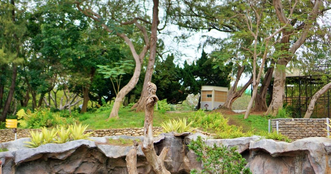 新竹市區景點 新竹公園地圖、日式庭園賞櫻半日遊,可以免費看猴子!